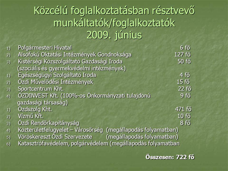 Közcélú foglalkoztatásban résztvevő munkáltatók/foglalkoztatók 2009.