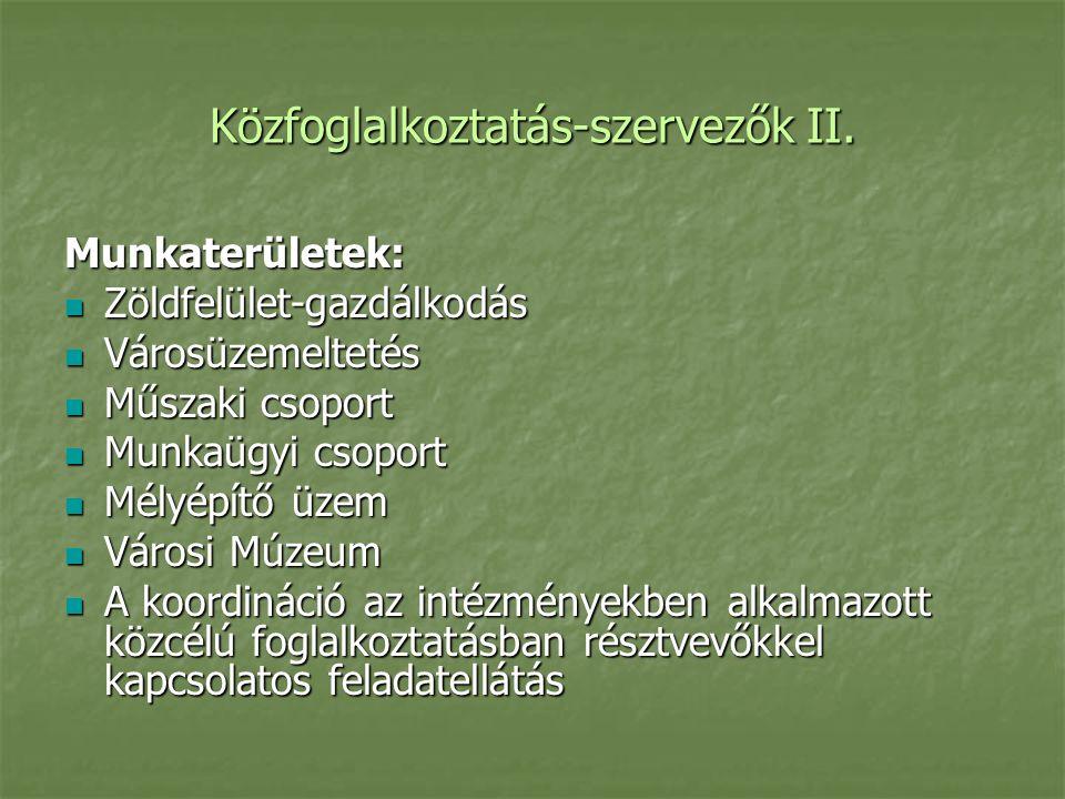 Közfoglalkoztatás-szervezők II.