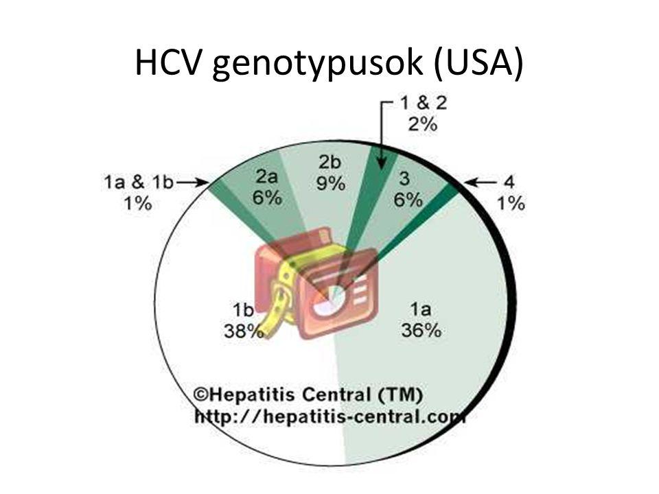 HCV genotypusok (USA)