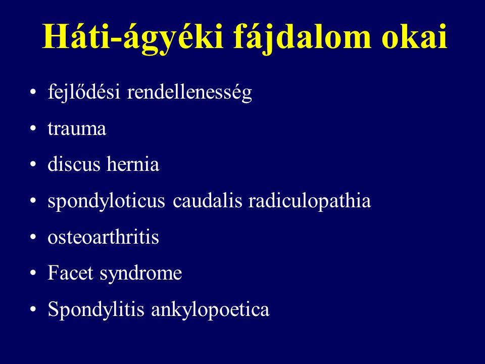 Háti-ágyéki fájdalom okai fejlődési rendellenesség trauma discus hernia spondyloticus caudalis radiculopathia osteoarthritis Facet syndrome Spondylitis ankylopoetica