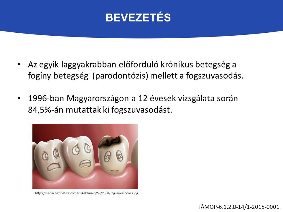 BEVEZETÉS Az egyik laggyakrabban előforduló krónikus betegség a fogíny betegség (parodontózis) mellett a fogszuvasodás. 1996-ban Magyarországon a 12 é