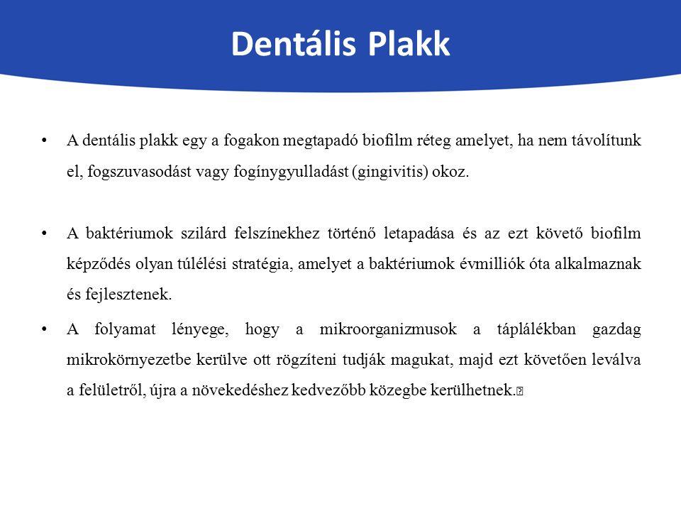 Dentális Plakk A dentális plakk egy a fogakon megtapadó biofilm réteg amelyet, ha nem távolítunk el, fogszuvasodást vagy fogínygyulladást (gingivitis)