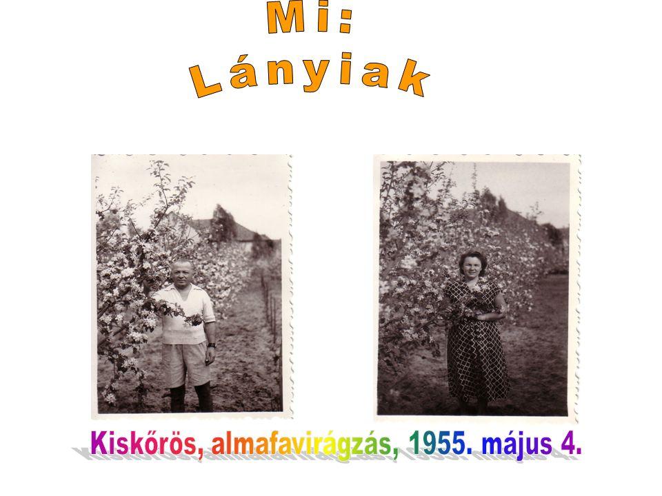 Anyám a kiskőrösiek között Büdöstó, 1951. július 8. OKTÓBER 18 dikán MEGSZÜLETEK ÉN!