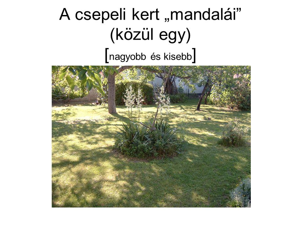 """A csepeli kert """"mandalái (közül egy) [ nagyobb és kisebb ]"""