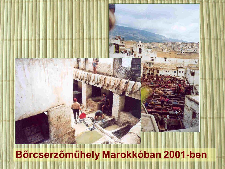 Bőrcserzőműhely Marokkóban 2001-ben