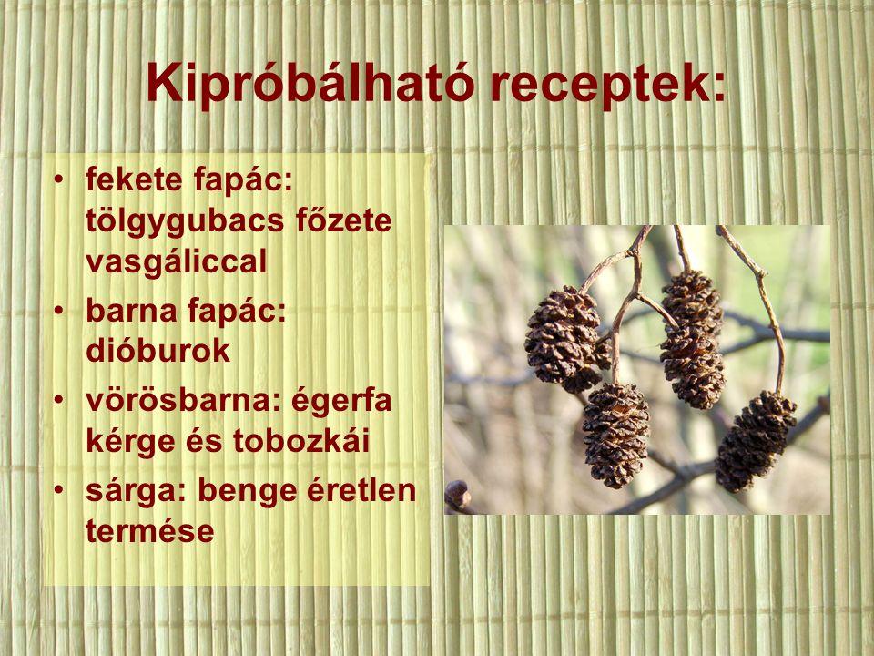 Kipróbálható receptek: fekete fapác: tölgygubacs főzete vasgáliccal barna fapác: dióburok vörösbarna: égerfa kérge és tobozkái sárga: benge éretlen termése