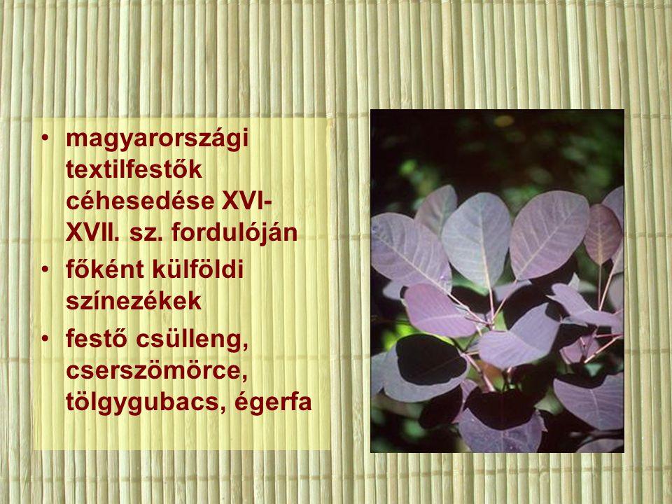 magyarországi textilfestők céhesedése XVI- XVII. sz.