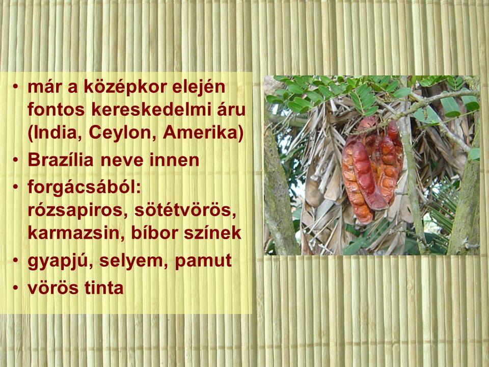 már a középkor elején fontos kereskedelmi áru (India, Ceylon, Amerika) Brazília neve innen forgácsából: rózsapiros, sötétvörös, karmazsin, bíbor színek gyapjú, selyem, pamut vörös tinta