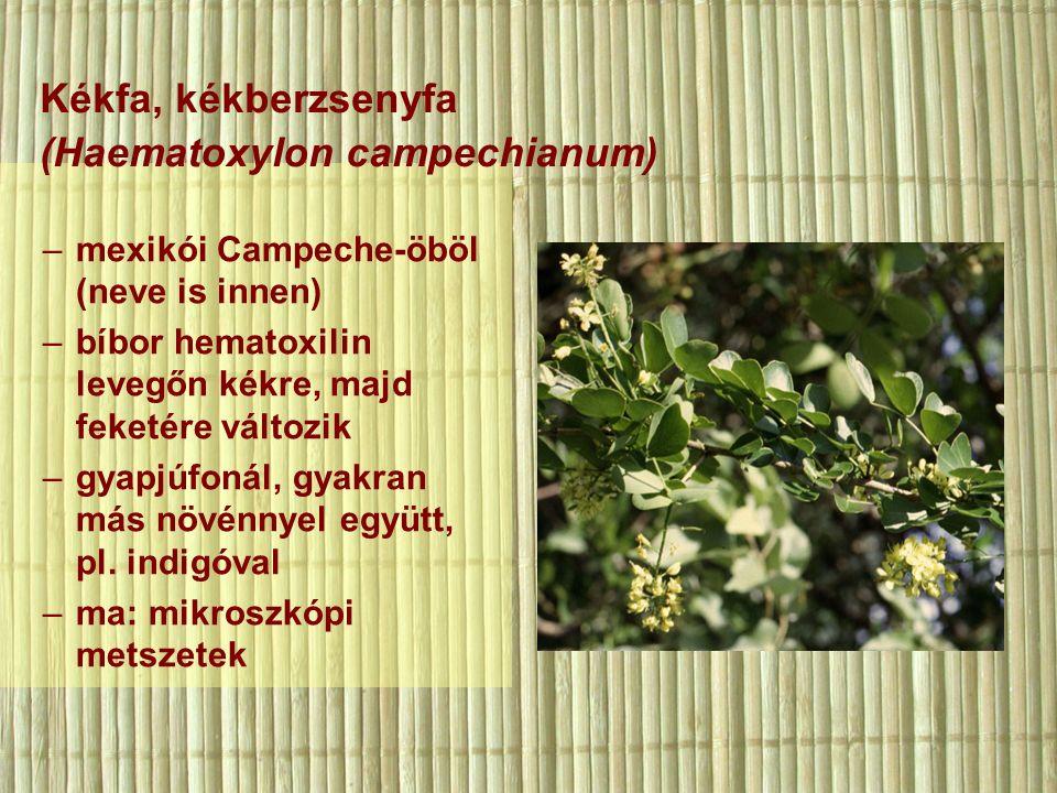 –mexikói Campeche-öböl (neve is innen) –bíbor hematoxilin levegőn kékre, majd feketére változik –gyapjúfonál, gyakran más növénnyel együtt, pl.
