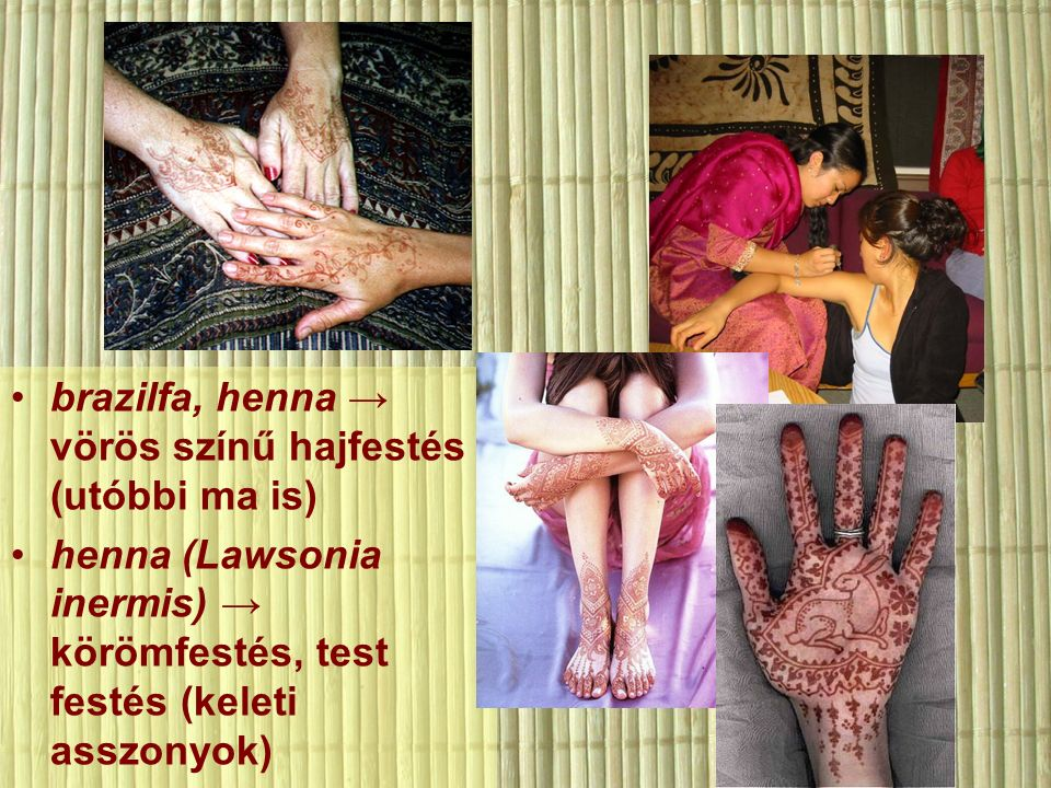 brazilfa, henna → vörös színű hajfestés (utóbbi ma is) henna (Lawsonia inermis) → körömfestés, test festés (keleti asszonyok)