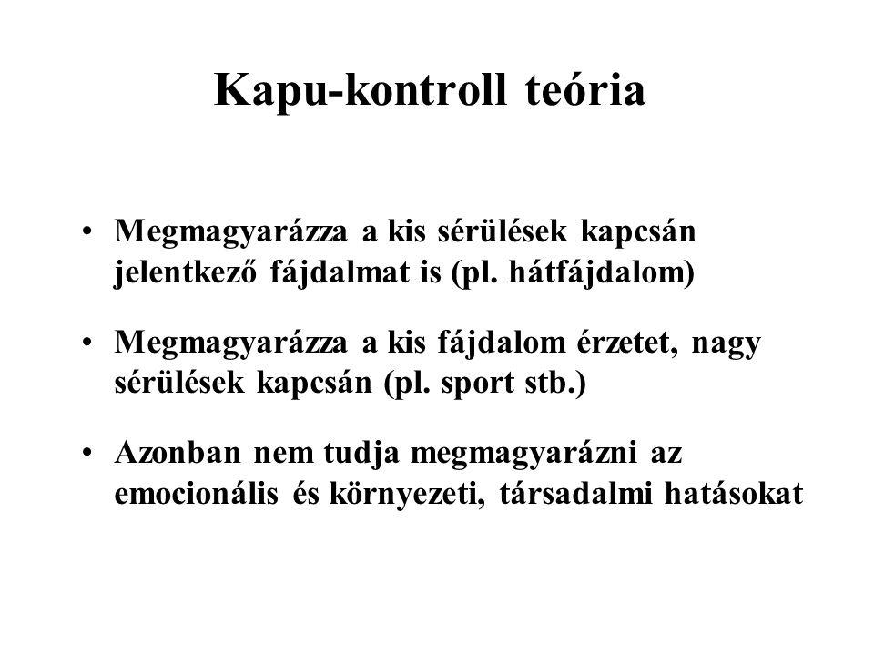 Kapu-kontroll teória Megmagyarázza a kis sérülések kapcsán jelentkező fájdalmat is (pl.