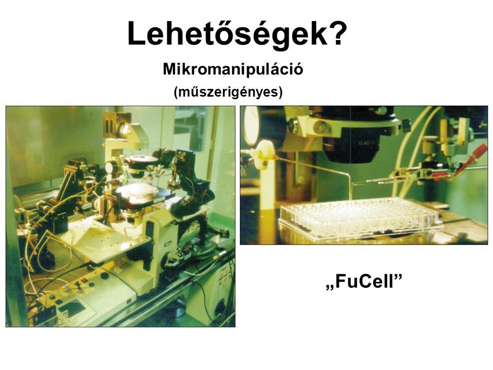 """Lehetőségek? Mikromanipuláció (műszerigényes) """"FuCell"""""""