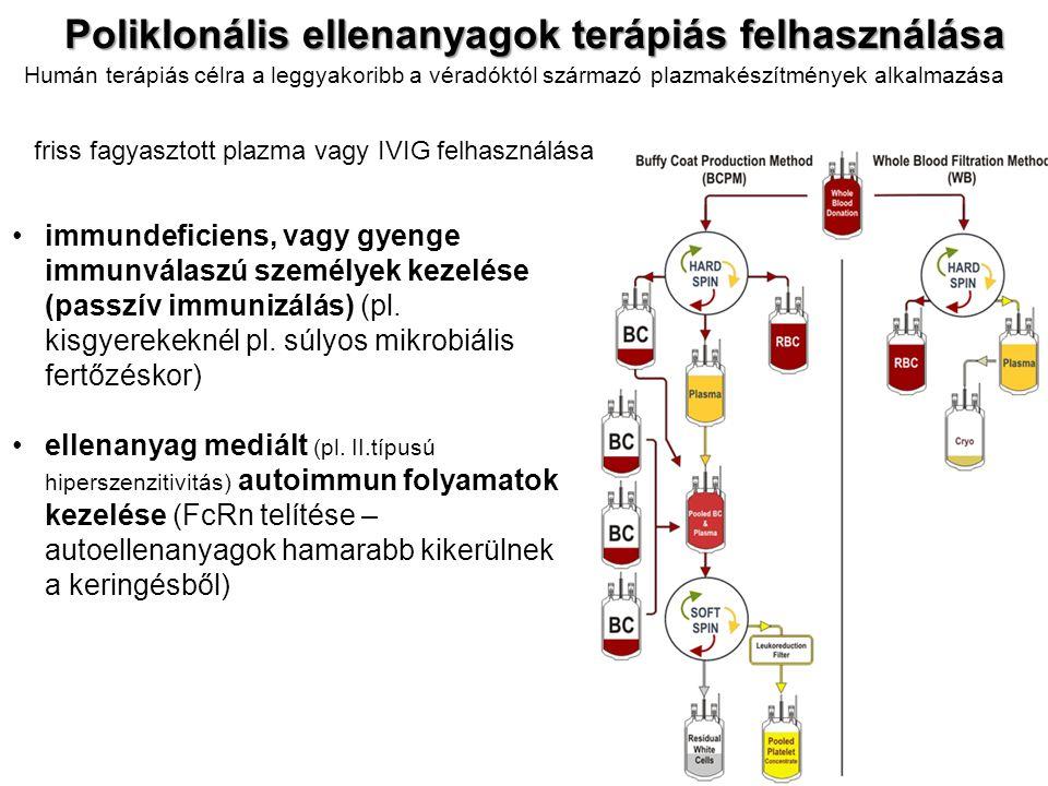 Poliklonális ellenanyagok terápiás felhasználása immundeficiens, vagy gyenge immunválaszú személyek kezelése (passzív immunizálás) (pl. kisgyerekeknél
