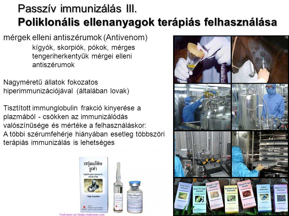 Passzív immunizálás III. Poliklonális ellenanyagok terápiás felhasználása mérgek elleni antiszérumok (Antivenom) kígyók, skorpiók, pókok, mérges tenge