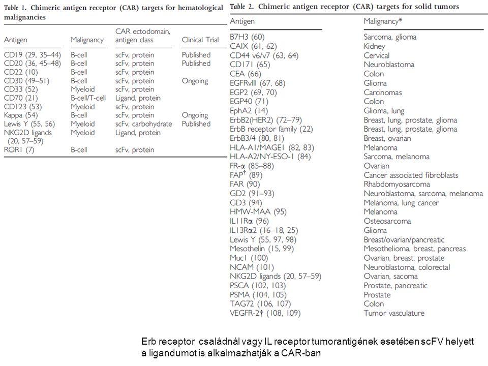 Erb receptor családnál vagy IL receptor tumorantigének esetében scFV helyett a ligandumot is alkalmazhatják a CAR-ban