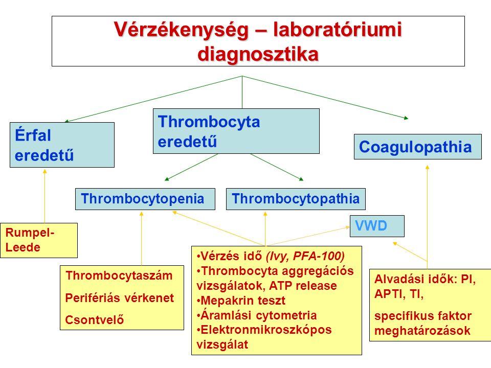 Vérzékenység – laboratóriumi diagnosztika Thrombocytopenia Érfal eredetű Coagulopathia Thrombocytopathia Thrombocytaszám Perifériás vérkenet Csontvelő Alvadási idők: PI, APTI, TI, specifikus faktor meghatározások VWD Rumpel- Leede Thrombocyta eredetű Vérzés idő (Ivy, PFA-100) Thrombocyta aggregációs vizsgálatok, ATP release Mepakrin teszt Áramlási cytometria Elektronmikroszkópos vizsgálat