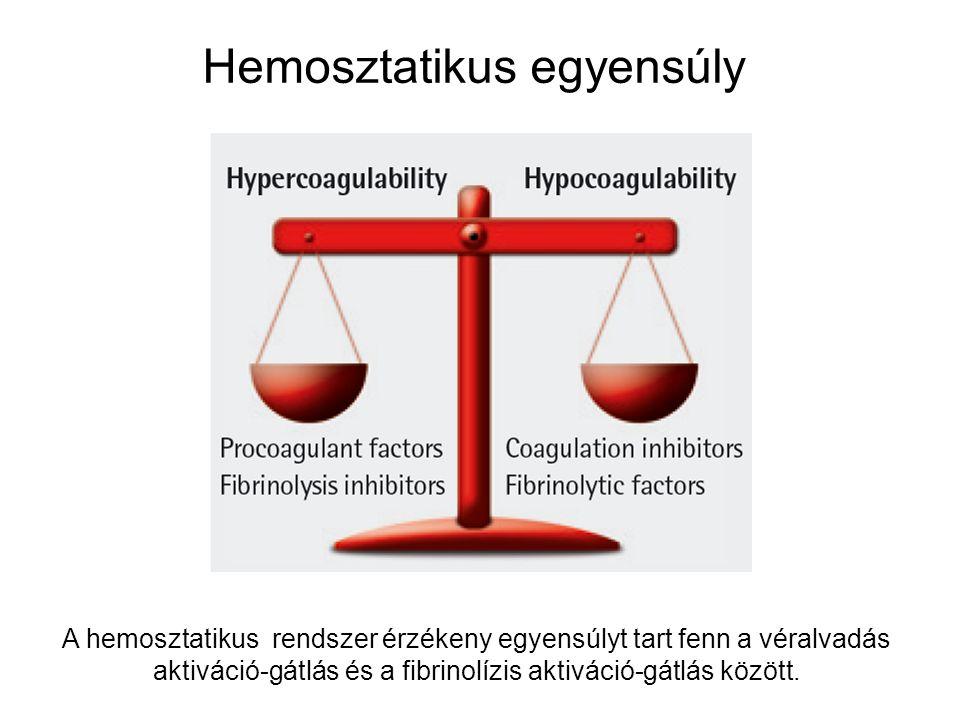 Hemosztatikus egyensúly A hemosztatikus rendszer érzékeny egyensúlyt tart fenn a véralvadás aktiváció-gátlás és a fibrinolízis aktiváció-gátlás között.