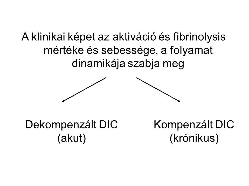 A klinikai képet az aktiváció és fibrinolysis mértéke és sebessége, a folyamat dinamikája szabja meg Dekompenzált DIC (akut) Kompenzált DIC (krónikus)