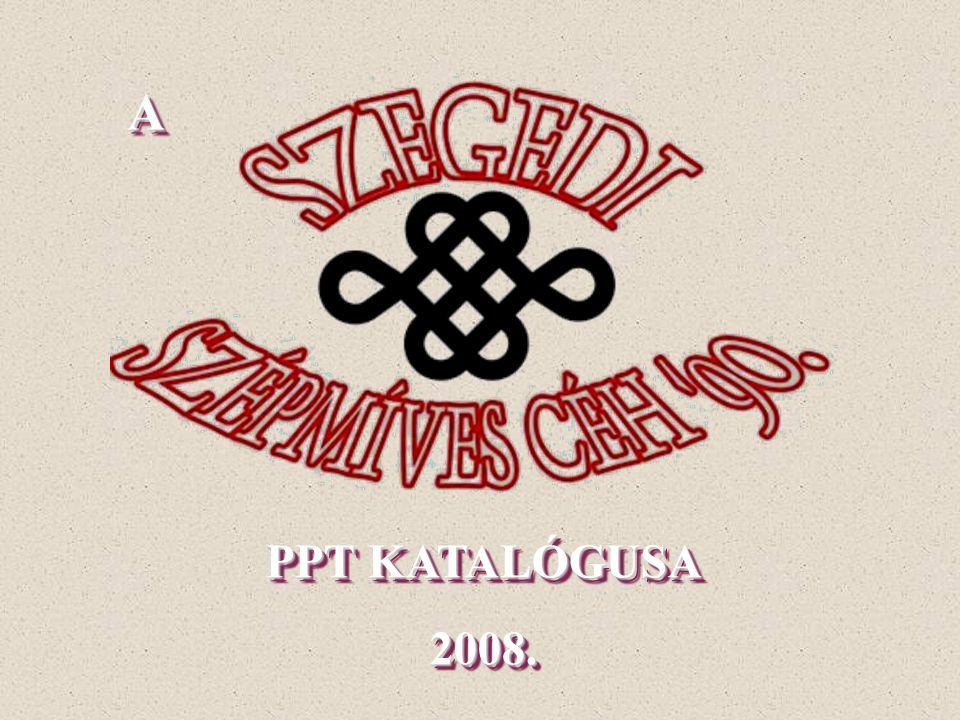 PPT KATALÓGUSA 2008. PPT KATALÓGUSA 2008. AA