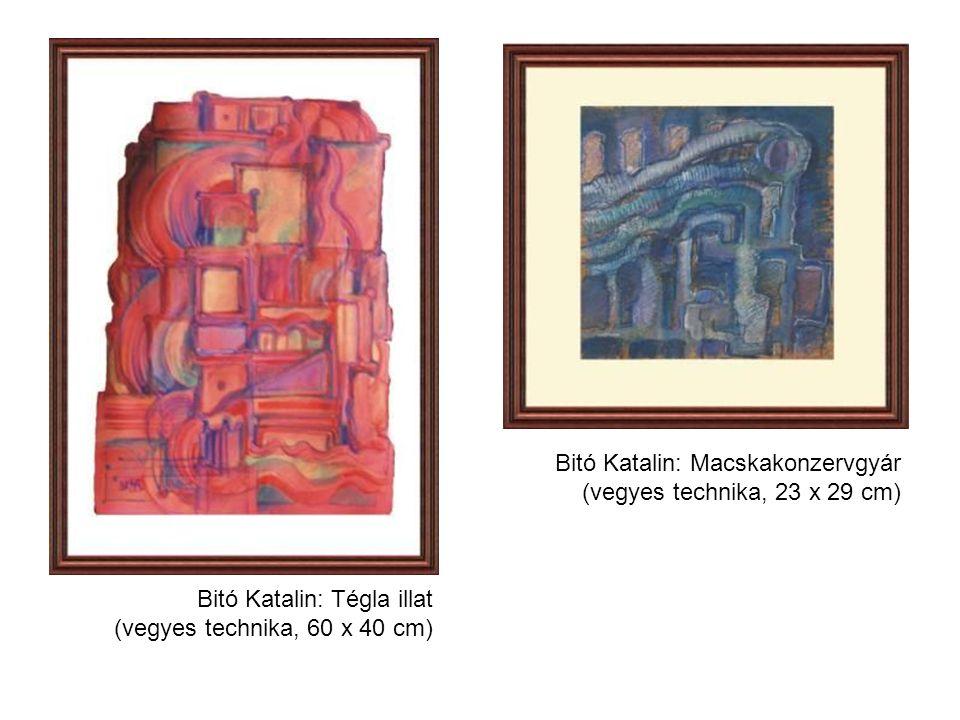 Bitó Katalin: Macskakonzervgyár (vegyes technika, 23 x 29 cm) Bitó Katalin: Tégla illat (vegyes technika, 60 x 40 cm)