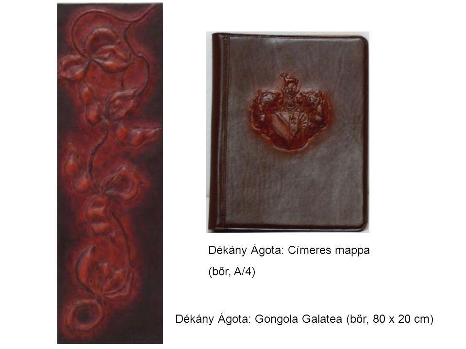 Dékány Ágota: Címeres mappa (bőr, A/4) Dékány Ágota: Gongola Galatea (bőr, 80 x 20 cm)