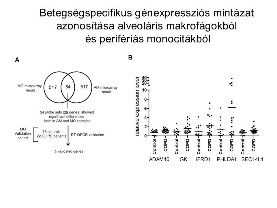 Control COPD Betegségspecifikus génexpressziós mintázat azonosítása