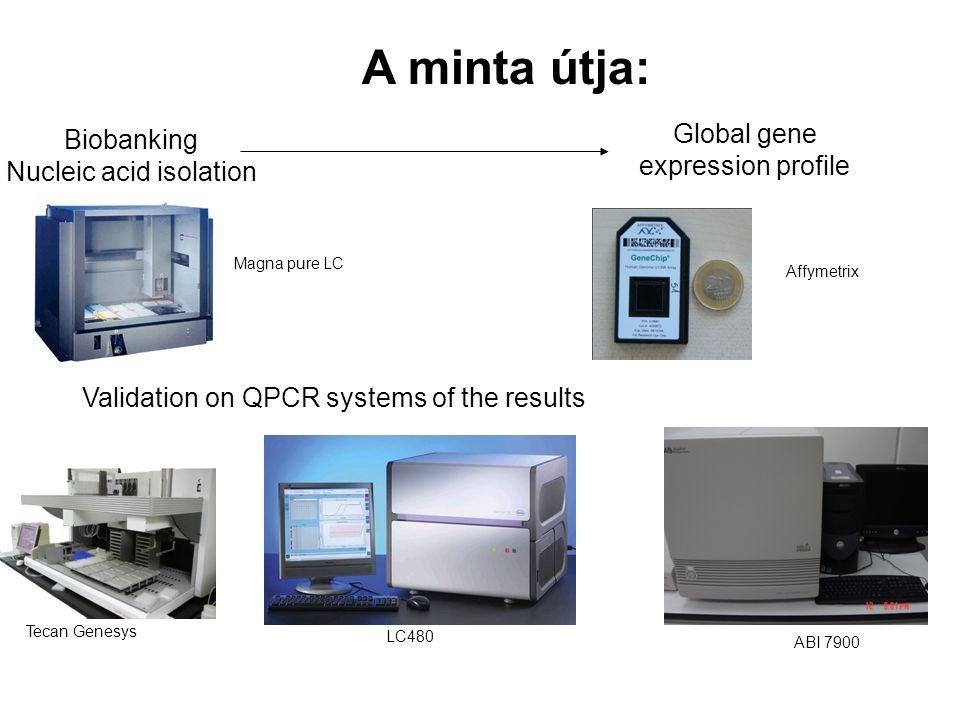 Módszerfejlesztés klinikai kutatásokhoz Genomika –Nemzeti Genomikai Technológiai Platform Biomarker felfedezés és biobankolás –Partnerek: Pfizer, Astr