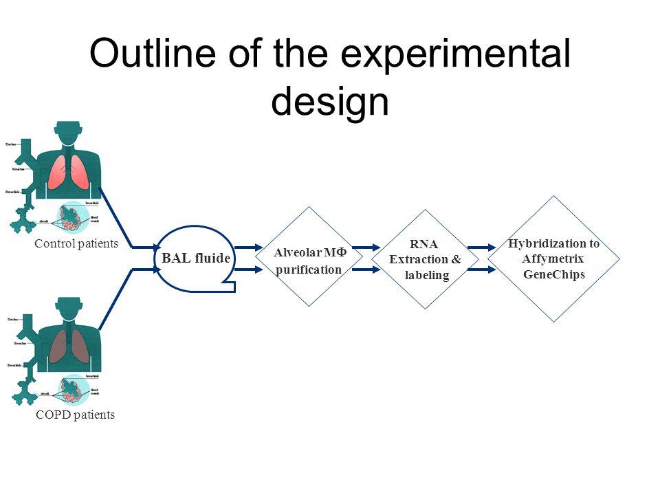 Outline of the experimental design Control patients COPD patients BAL fluide Alveolar M  purification RNA Extraction & labeling Hybridization to Affymetrix GeneChips