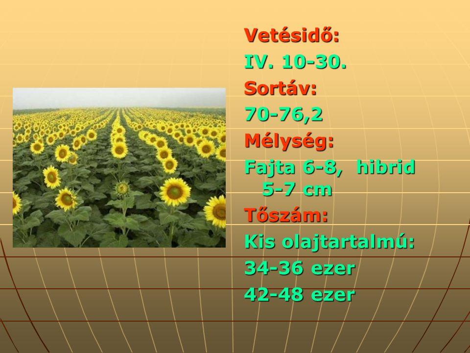 Vetésidő: IV. 10-30.