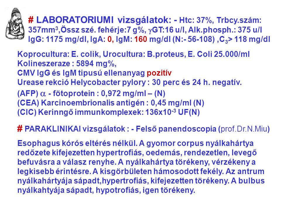 # LABORATORIUMI vizsgálatok: - Htc: 37%, Trbcy.szám: 357mm 3,Össz szé.