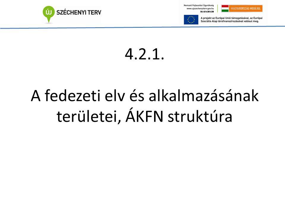 4.2.1. A fedezeti elv és alkalmazásának területei, ÁKFN struktúra