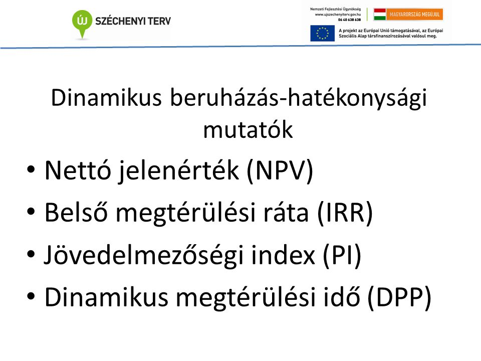 Dinamikus beruházás-hatékonysági mutatók Nettó jelenérték (NPV) Belső megtérülési ráta (IRR) Jövedelmezőségi index (PI) Dinamikus megtérülési idő (DPP)