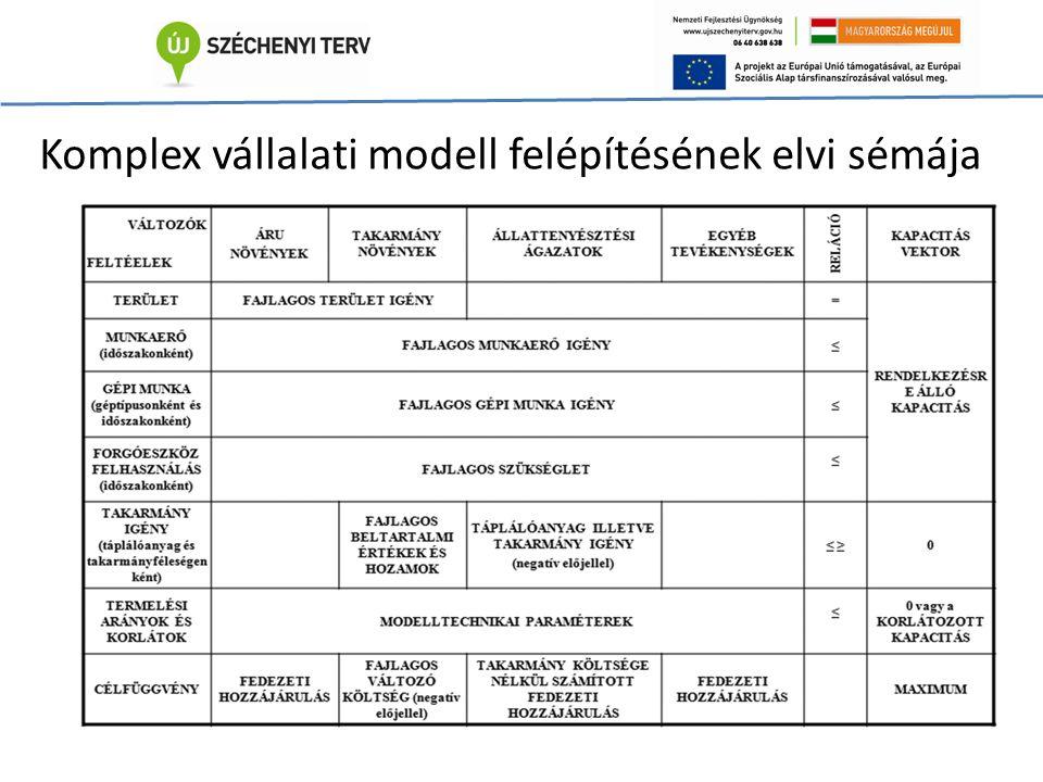 Komplex vállalati modell felépítésének elvi sémája