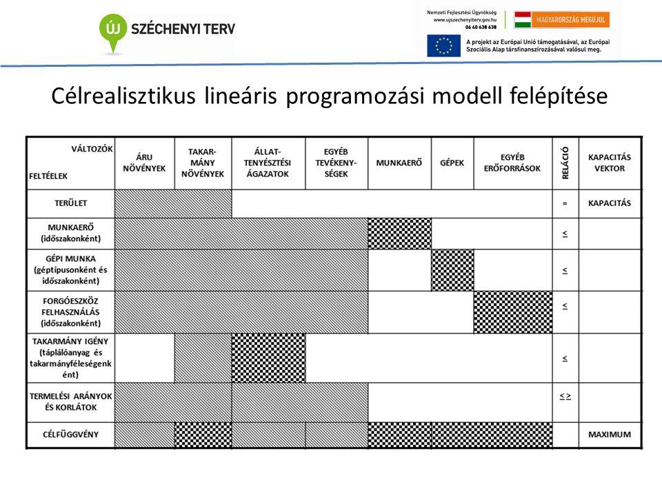 Célrealisztikus lineáris programozási modell felépítése