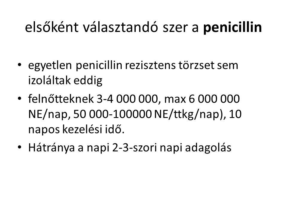 elsőként választandó szer a penicillin egyetlen penicillin rezisztens törzset sem izoláltak eddig felnőtteknek 3-4 000 000, max 6 000 000 NE/nap, 50 000-100000 NE/ttkg/nap), 10 napos kezelési idő.