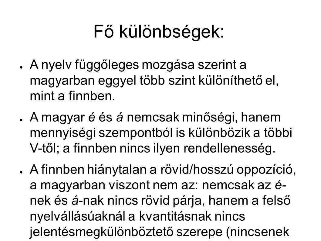 Fő különbségek: ● A nyelv függőleges mozgása szerint a magyarban eggyel több szint különíthető el, mint a finnben.