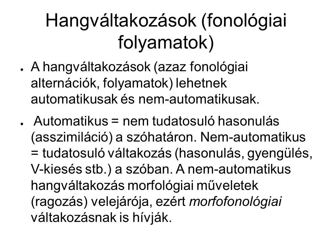 Hangváltakozások (fonológiai folyamatok) ● A hangváltakozások (azaz fonológiai alternációk, folyamatok) lehetnek automatikusak és nem-automatikusak.