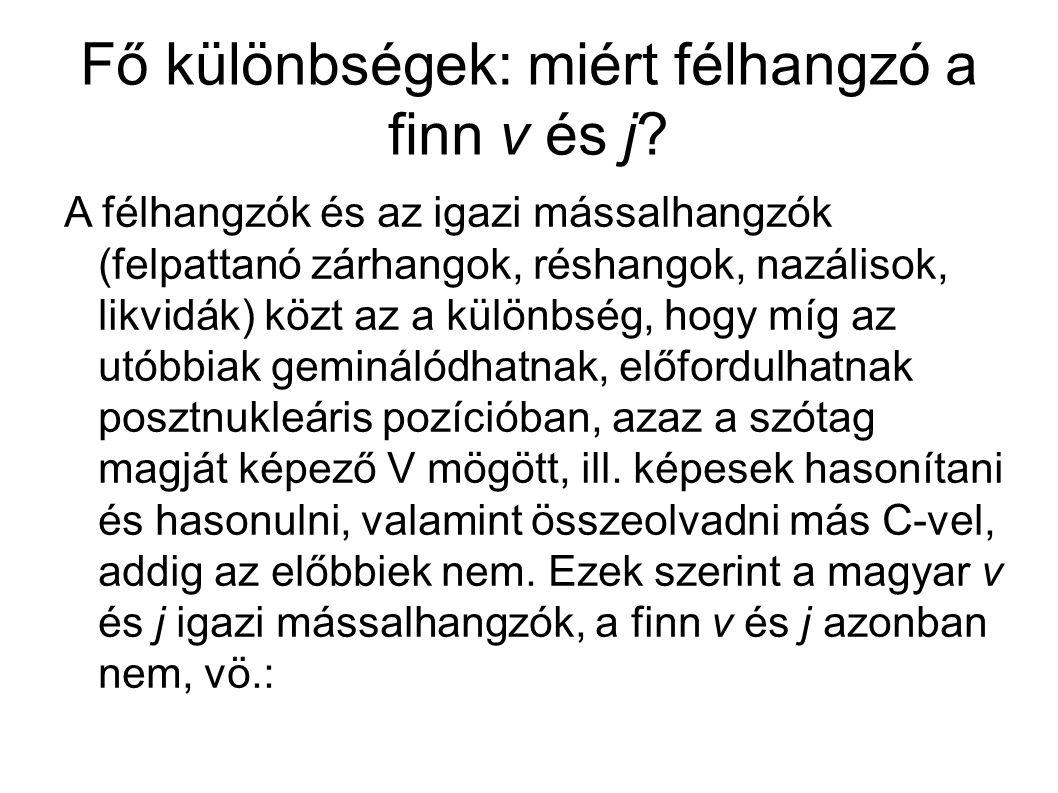 Fő különbségek: miért félhangzó a finn v és j.● *vv, *jj kävi-, de: käyvä (*kävvä) ● vö.