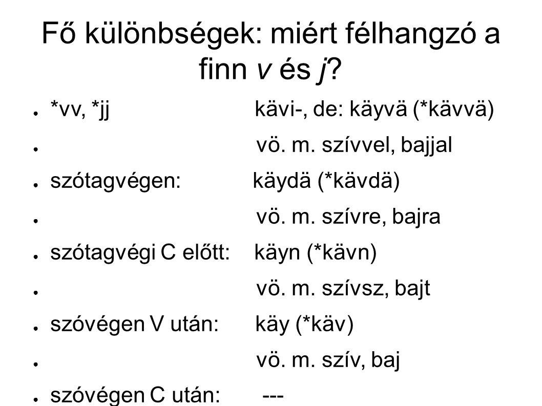 Fő különbségek: miért félhangzó a finn v és j. ● *vv, *jj kävi-, de: käyvä (*kävvä) ● vö.