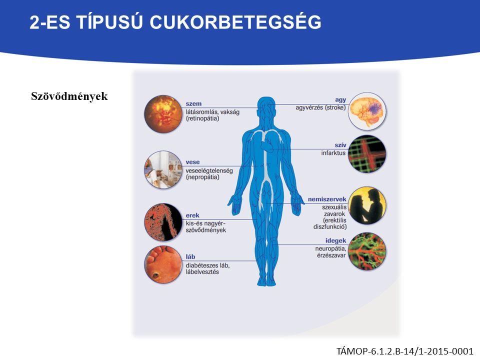 2-ES TÍPUSÚ CUKORBETEGSÉG Szövődmények TÁMOP-6.1.2.B-14/1-2015-0001