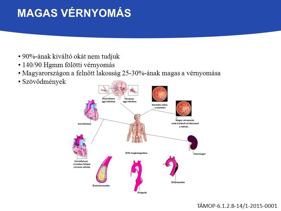 MAGAS VÉRNYOMÁS 90%-ának kiváltó okát nem tudjuk 140/90 Hgmm fölötti vérnyomás Magyarországon a felnőtt lakosság 25-30%-ának magas a vérnyomása Szövődmények TÁMOP-6.1.2.B-14/1-2015-0001