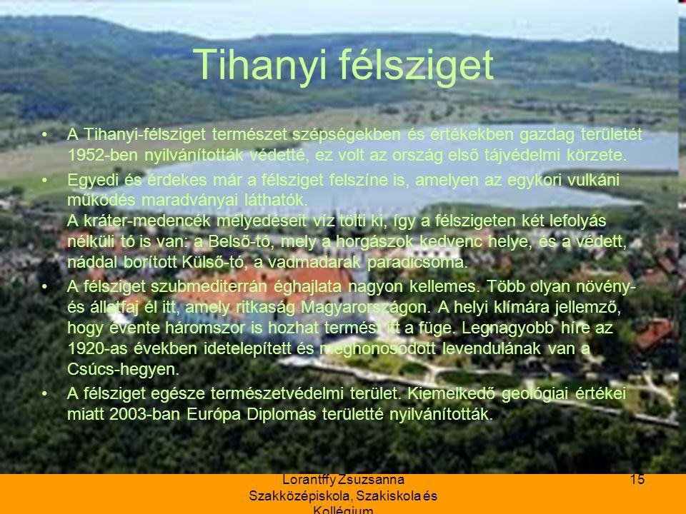 Lorantffy Zsuzsanna Szakközépiskola, Szakiskola és Kollégium 15 Tihanyi félsziget A Tihanyi-félsziget természet szépségekben és értékekben gazdag területét 1952-ben nyilvánították védetté, ez volt az ország első tájvédelmi körzete.