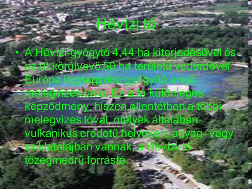 Lorantffy Zsuzsanna Szakközépiskola, Szakiskola és Kollégium 18 Hévízi tó A Hévízi-gyógytó 4,44 ha kiterjedésével és az őt körülvevő 50 ha területű véderdővel Európa legnagyobb gyógyító erejű, melegvizes tava.
