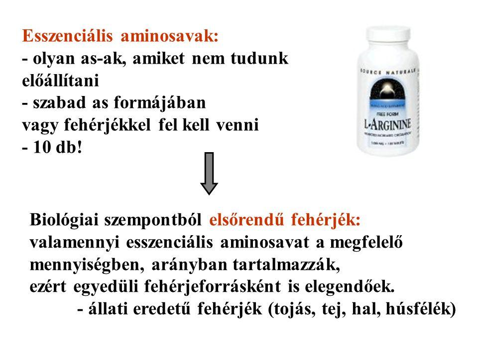 Esszenciális aminosavak: - olyan as-ak, amiket nem tudunk előállítani - szabad as formájában vagy fehérjékkel fel kell venni - 10 db.