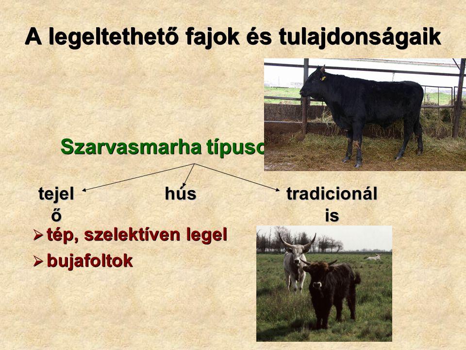 A legeltethető fajok és tulajdonságaik Szarvasmarha típusok  tép, szelektíven legel  bujafoltok Szarvasmarha típusok  tép, szelektíven legel  bujafoltok tejel ő hús tradicionál is