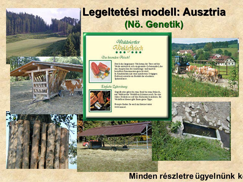 Legeltetési modell: Ausztria (Nö. Genetik) Minden részletre ügyelnünk kell!