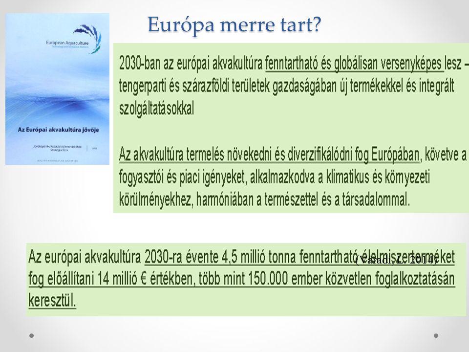 Európa merre tart (Váradi, L. 2014)