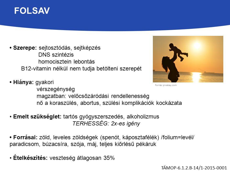 FOLSAV Szerepe: sejtosztódás, sejtképzés DNS szintézis homocisztein lebontás B12-vitamin nélkül nem tudja betölteni szerepét Hiánya: gyakori vérszegénység magzatban: velőcsőzáródási rendellenesség nő a koraszülés, abortus, szülési komplikációk kockázata Emelt szükséglet: tartós gyógyszerszedés, alkoholizmus TERHESSÉG: 2x-es igény Forrásai: zöld, leveles zöldségek (spenót, káposztafélék) /folium=levél/ paradicsom, búzacsíra, szója, máj, teljes kiőrlésű pékáruk Ételkészítés: veszteség átlagosan 35% TÁMOP-6.1.2.B-14/1-2015-0001 Forrás: pixabay.com