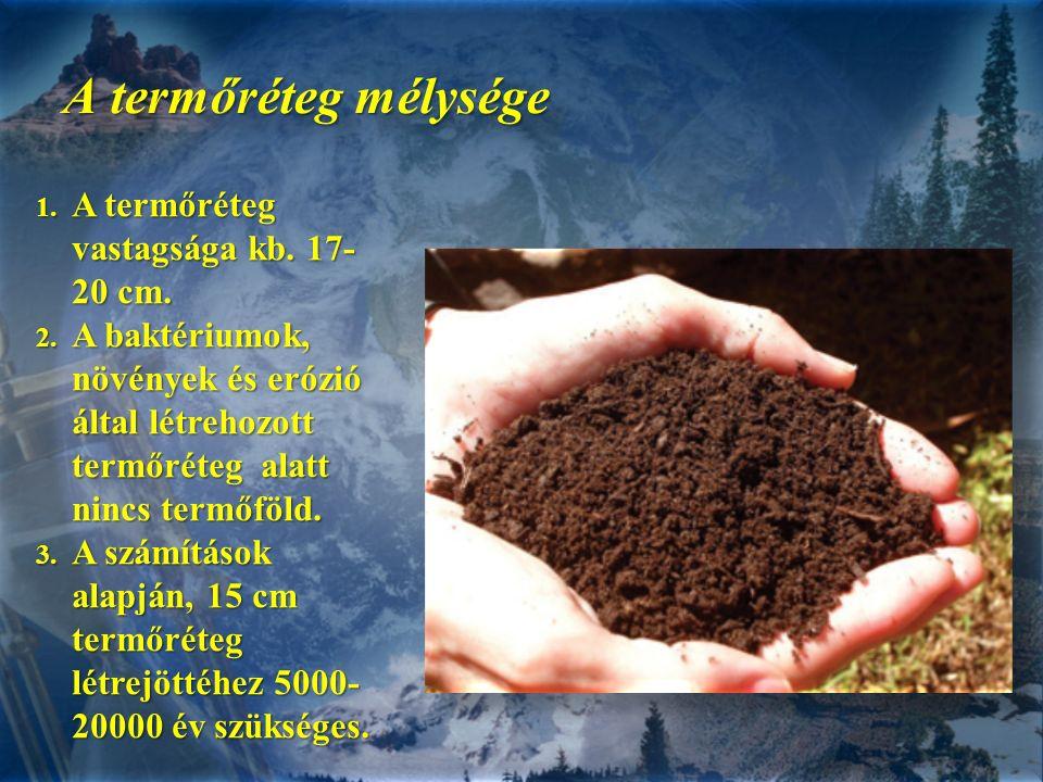 A termőréteg mélysége 1. A termőréteg vastagsága kb. 17- 20 cm. 2. A baktériumok, növények és erózió által létrehozott termőréteg alatt nincs termőföl