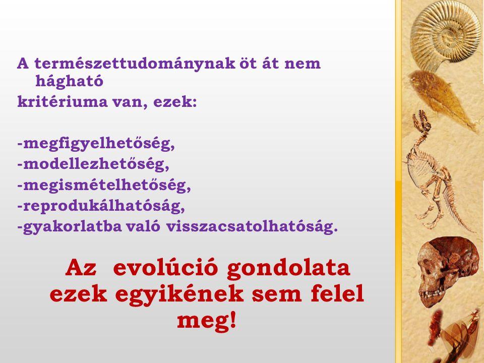 A bibliai teremtés általános jellemzői Egyetemleges elv, Isten kijelentésén alapszik, minden a teremtés eredménye.